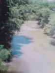 This is the creek where our forefather lived Petti go cow creek an Indian name. The correct spelling is Potacocowa the r